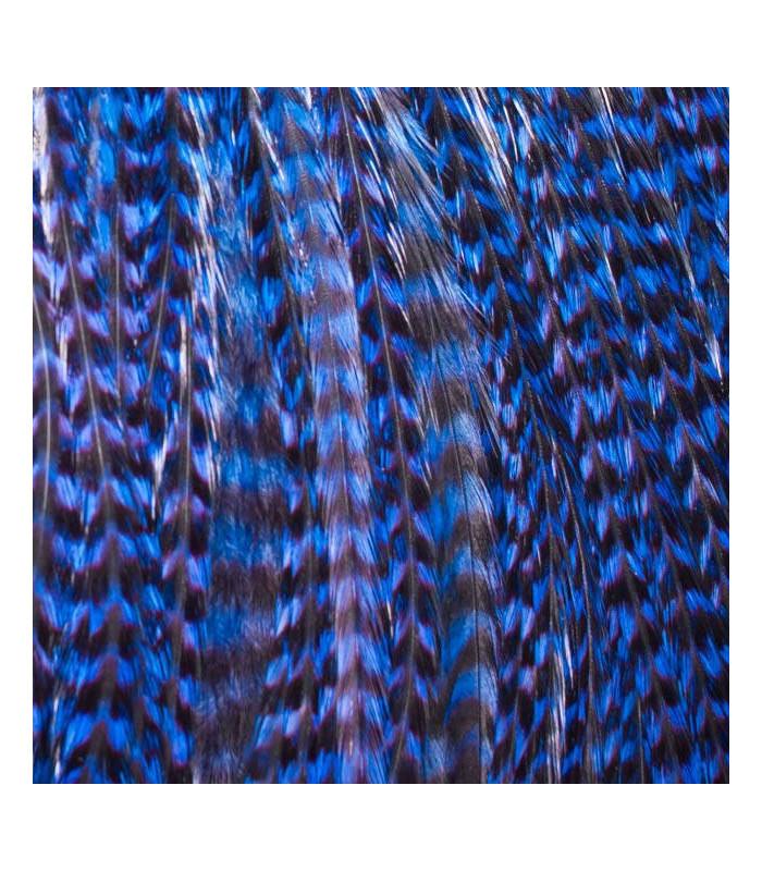 Pack 3 Plumas M Azul Electrico