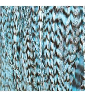 Pack 3 Plumas M Azul Claro