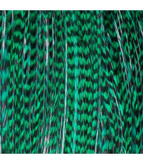 Pack 3 Plumas M Verde Esmeralda