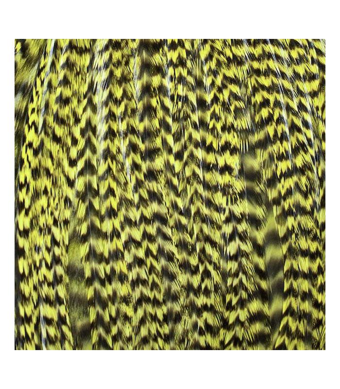 Pack 3 Plumas M Amarillo