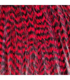 Pack 3 Plumas M Rojo