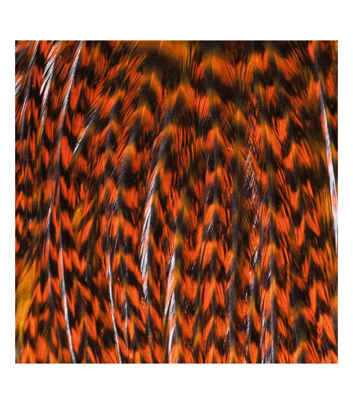 Pack 3 Plumas M Naranja