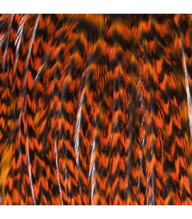 Feathers Pack 3 S Orange