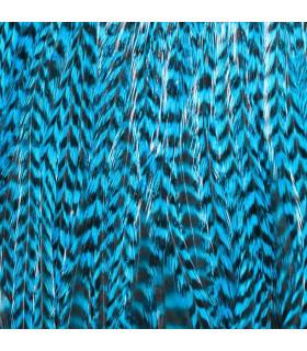 Pack 3 Plumas XL Azul Turquesa
