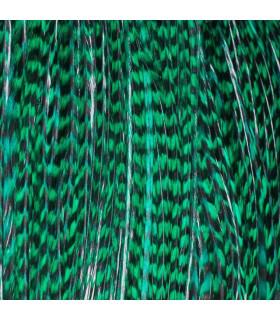 Pack 3 Plumas XL Verde Esmeralda