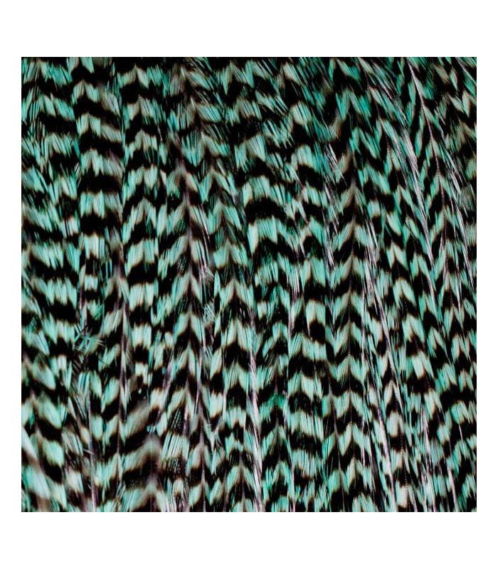 Pack 3 Plumas XL Verde Turquesa