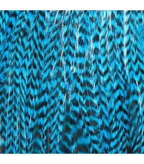 Feathers Pack 3 XXL Blue Turquoise