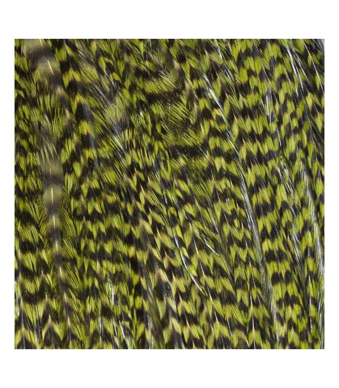 Pack 3 Plumas XL Verde Oliva