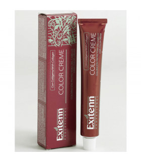 Exitenn Color Creme 12/01 Platino Radiante 60ml