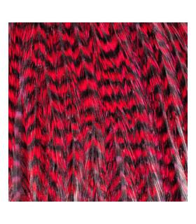 Pack 3 Plumas S Rojo