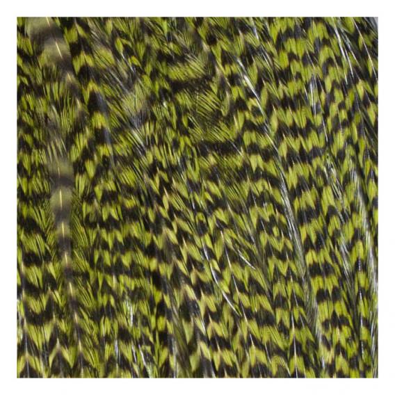Pack 3 Plumas L Verde Oliva