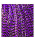 Pack 3 Plumas L Violeta