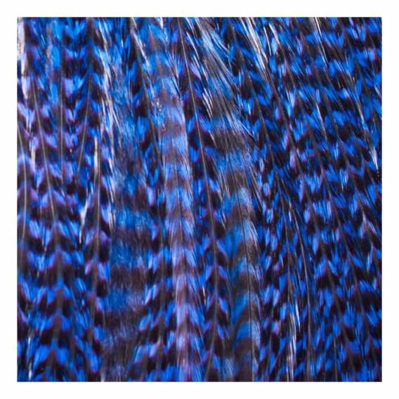 Pack 3 Plumas L Azul Eléctrico