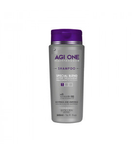 Agi One Shampoo Maintenance 500ml