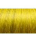 71_yellow