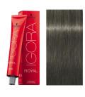Igora Royal 6-32 Rubio Oscuro Mate Ceniza 60ml Schwarzkopf Prof. tinte de pelo