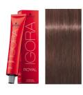 Igora Royal 6-28 Rubio Oscuro Mate Rojo 60ml Schwarzkopf Prof. tinte de pelo