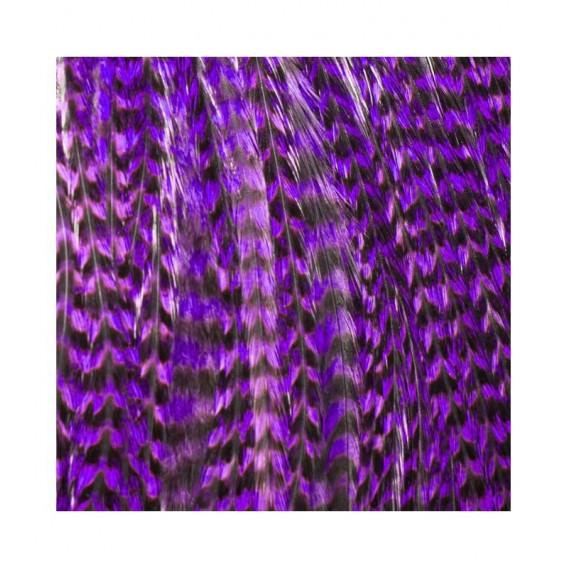 Pack 1 Pluma XXL Violeta
