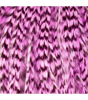 Pack 1 Pluma XXL Rosa Claro