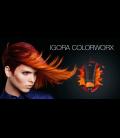 Igora ColorWorx